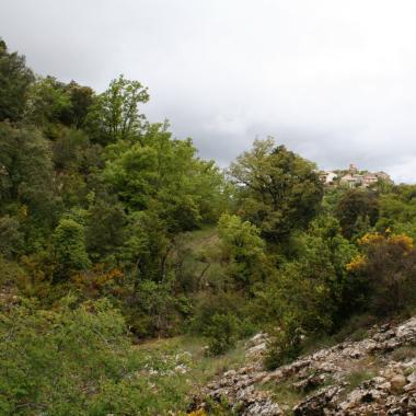 Foto 3: barranc de Canarill.