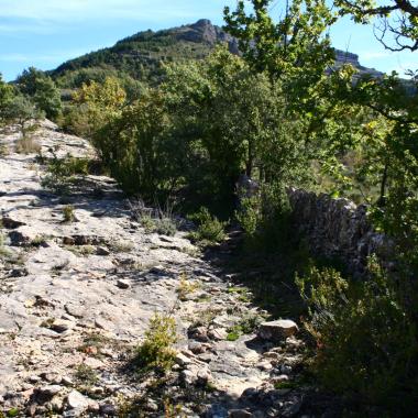 Foto 5: marge de pedra al costat del camí.