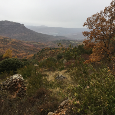 Foto 8: vall del barranc d'Espluga Freda.